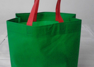 Green Polypropylene Bag | Opened | Woven